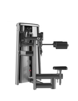 GYM80 DELTOID RAISE MACHINE CN003015