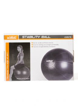 STABILITY BALL WITH PUMP 65CM LS3579